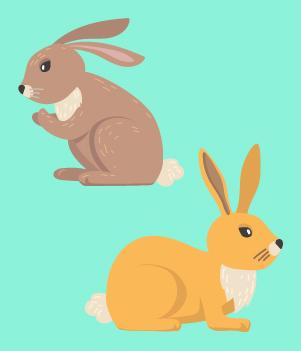 15. Rabbits