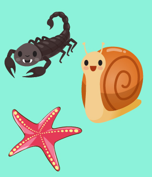 4. Invertebrates